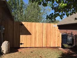 New Fence and Gate 4/11/16 – Sloths Cure Cancer