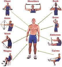 Original Bullworker Exercise Chart Ever Heard Of A Bullworker Bodybuilding Com Forums Gym