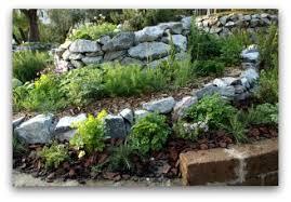 outdoor herb garden. Outdoor Herb Rock Garden Idea G
