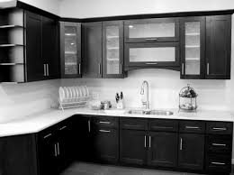 Kitchen Cabinet Replacement Modern Kitchen Cabinet Doors Replacement Alkamediacom