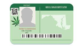 How to get a medical marijuana card. Get Your Medical Cannabis Card Md Delmarva Business Directory Salisbury Business Journal