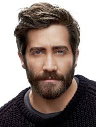 Medium Length Mens Hairstyles 44 Inspiration 24 Best Hair Of The Man Images On Pinterest Beard Styles Grey