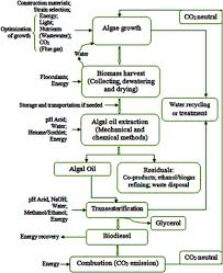 Biodiesel Compatibility Chart A Schematic Diagram Of Microalgae Production For Biodiesel