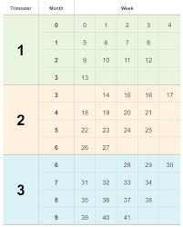 Pregnancy By Weeks Calendar Counting Your Pregnancy In Weeks Months And Trimesters Babycenter