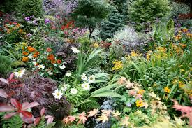 Small Picture gardening under pine trees marvelous perennial garden plans zone