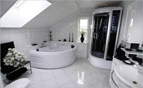 Really Cool Bathrooms Home Design