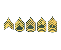 Armys New Promotion Point System Focuses On Soldier Skills