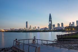 Shenzhen Wikipedia