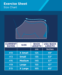 Horse Rug Size Guide