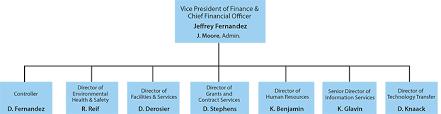 Cfo Organizational Chart Operations Finance