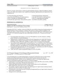 Executive Resume Services Lovely Resume Sample 1 It Executive Career