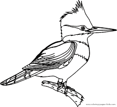 Small Picture Kingfisher coloring page Nature crafts and ideas Pinterest