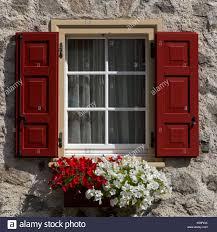 Blumen Auf Der Fensterbank Fenster Mit Fensterläden Aus Holz