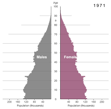 Baby Boomer Demographic Chart March 2010 The Big Picture