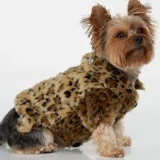 beautiful leopard fur dog coat