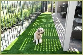 artificial grass las vegas. Artificial Grass Las Vegas Fake Cost .