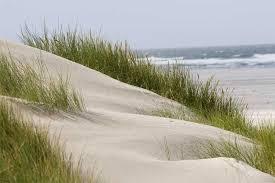 Afbeeldingsresultaat voor strand bij hoorn terschelling