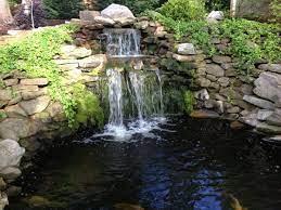 backyard pond design koi pond designs
