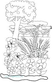 Creation Coloring Pages Free Creation Coloring Pages Light Day 1 A