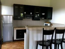 Decorate Apartment Kitchen Slim Stainless Steel Table Black Granite Countertop Small