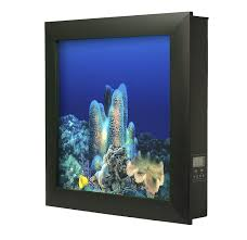 Aussie 2.5 Gallon Wall Mounted Aquarium Tank