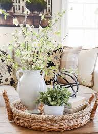 """Plant Interior Design Amazing Plantsucculentcandlecoralletter""""R"""" Vignettes Flowers"""