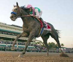 Image result for arrogate