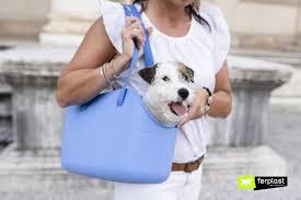 берите с собой собаку везде и всегда с переноской with-me!