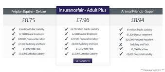 horse rider insurance fair horse insurance quote comparison 44billionlater