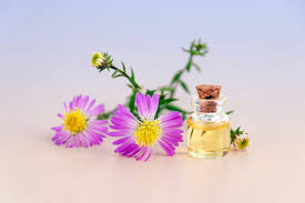 Soothing Scent Designs 7 Essential Oils For Relaxation And Better Sleep Your