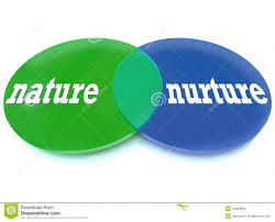nurture vs nature clipart clipartfest nature vs nurture venn