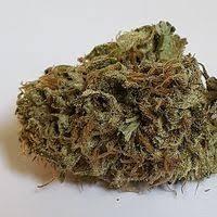 Koli Cannabis Rx Dispensary Menu Leafly