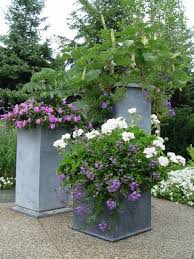 Small Picture 874 best Landscaping with Planters and Containers images on