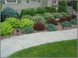 Small Picture House foundation shrub plantings of barberry spirea blue spruce