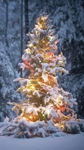 christmas tree background iphone 6. Exellent Background Snowy Christmas Tree IPhone 66 Plus Wallpaper With Tree Background Iphone 6