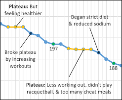 Monthly Weight Loss Chart Health Traveler Weight Loss Plateaus How To Handle Them