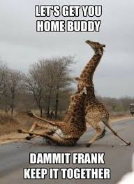 Giraffe Quotes Best Giraffe Quotes Funny Meme Image 48 QuotesBae