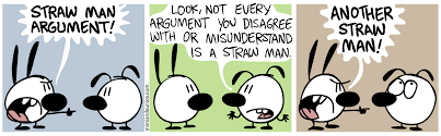 logical fallacies lazygp me 463 strawman 1