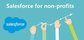 Salesforce Forms For Non Profits Organizations Npo