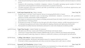 Research Portfolio Template Portfolio Development For The High School Student Template E