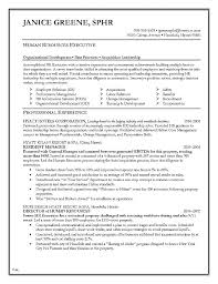 Excellent Resumes Examples Best Resumes Examples Good Resume ...