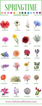 flowers pictures and names best 20 names of flowers ideas on