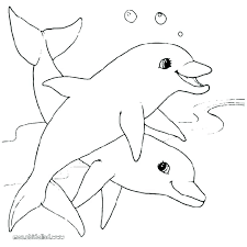 Miami Dolphins Coloring Pages Free Dolphin Coloring Pictures Pages