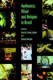 Ayahuasca, Ritual and Religion in ...