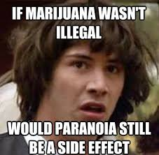 Marijuana Meme Monday- 6/3 (Paranoia Edition) | HighRoulette.com ... via Relatably.com