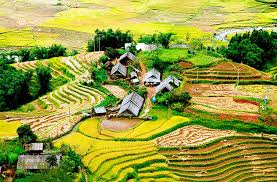 Image result for du lịch sapa