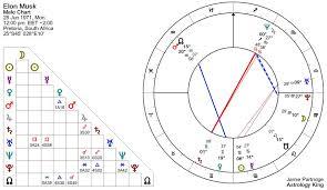 Elon Musk Horoscope Erratic Behavior Insults And