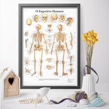 Human Skeleton Wall Chart Us 7 84 Scientific Model Of Human Skeletal System Chart Education Poster Canvas Painting Art Print Poster Wall Art Pictures In Painting