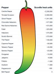 Pepper Level Chart 21 Rational Chili Scale