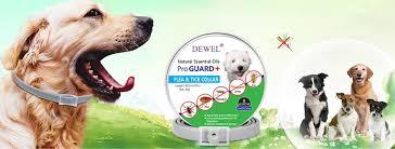 Dewel ProGuard+ - Home | Facebook